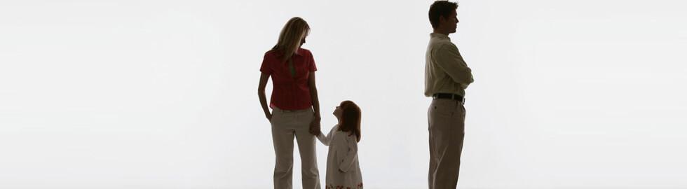 Custody rights